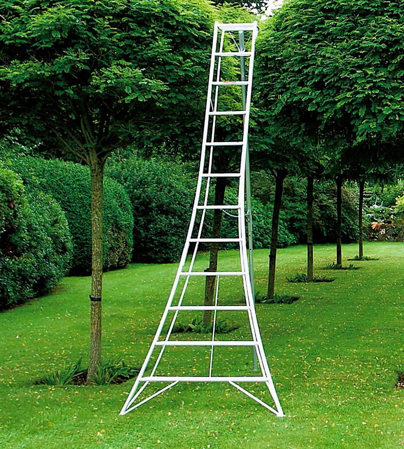 Hasegawa Ladders Hasegawa Ladders