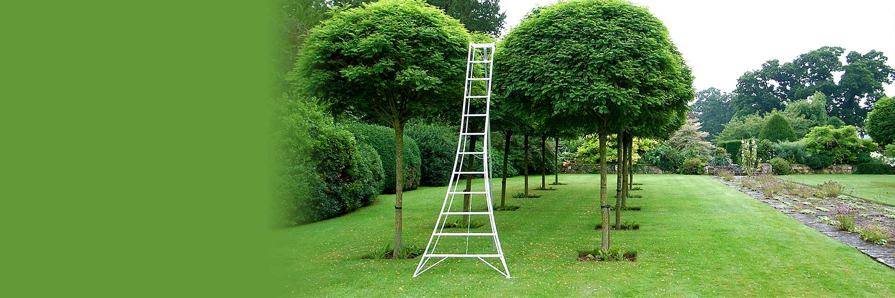 Tripod Ladder - 6 Feet